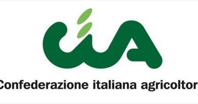 """Xylella: abbattuto il """"famoso"""" albero di Cisternino   CIA Puglia: """"Finalmente attuato quanto previsto dai protocolli"""""""