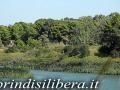 Invaso-Cillarese-Brindisi-19