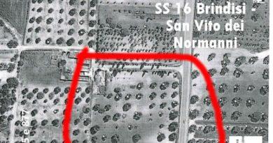 No TAP Brindisi,Xylella: 160 ulivi da sradicare in Contrada Mascava in agro di Brindisi, illegittimo.